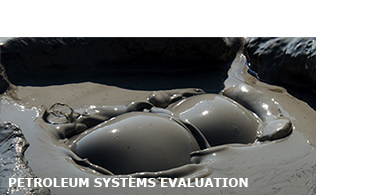 Petroleum systems evaluation